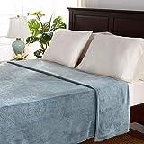 Berkshire Blanket Serasoft Blanket   Plush Bed Blanket   Lightweight Warmth   Light Blue   Twin (60' x 90')