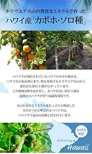 ヨグモグ『ハワイ産パパイヤレモン2個付き』