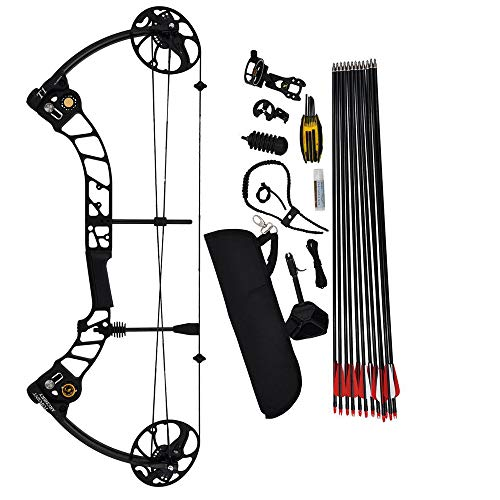 WGLG Bow And Arrow for Adults, Cutting-Edge Composite Bow And Arrow, Pulley...