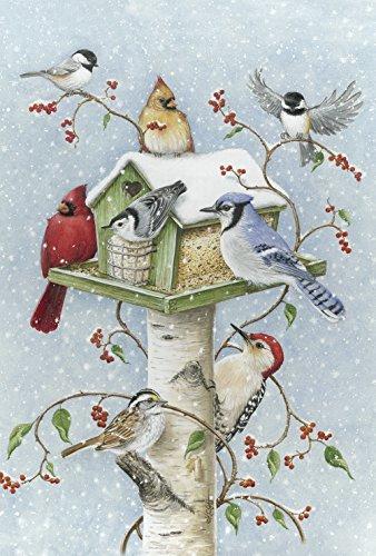 Toland Home Garden Winter Birds 12.5 x 18 Inch Decorative Snow Bird Cardinal Jay Birdhouse Garden Flag
