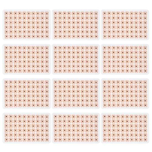 LIXBD 1800 Stück Einweg-Ohrpresse-Samen, Akupunktur, Vaccaria, Pflaster, Bohnenmassage, Ohrsamen, Akupressur-Set (10 Blatt)