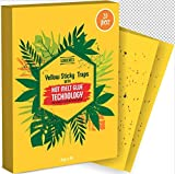 Fruit Fly Traps Indoor 20 Pack - Gnat Traps Indoor - Fungus Gnat Traps for House Plants, Kitchen - Fly Paper - Yellow Sticky Traps for Gnats