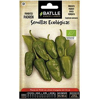 Semillas Ecológicas Aromáticas - Tomillo - ECO - Batlle: Amazon.es ...