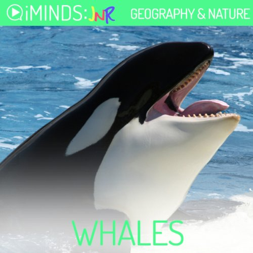 Whales audiobook cover art