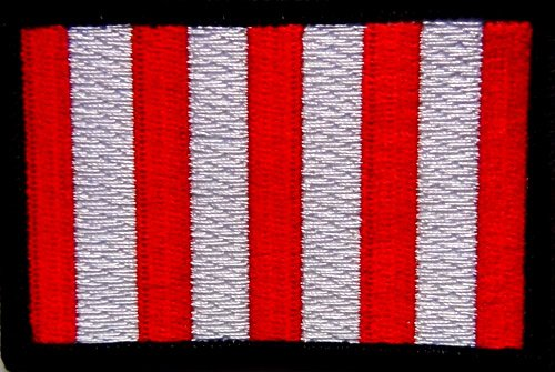 Son's of Liberty Flag Patch 3'x2' Hook and Loop Backing