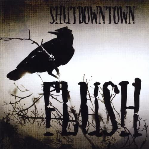 ShutDownTown