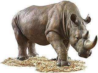Design Toscano KY71133 South African Rhino Outdoor Garden Statue, 34 Inch