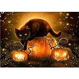 YEESAM ART Papelería Gato Negro Calabaza Linterna Halloween Pintura por Números 16x20 pulgadas Kit de pintura DIY para decoración de pared del hogar (Negro, Enmarcado)