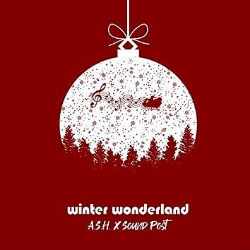 Winter Wonderland (feat. Sound Post)
