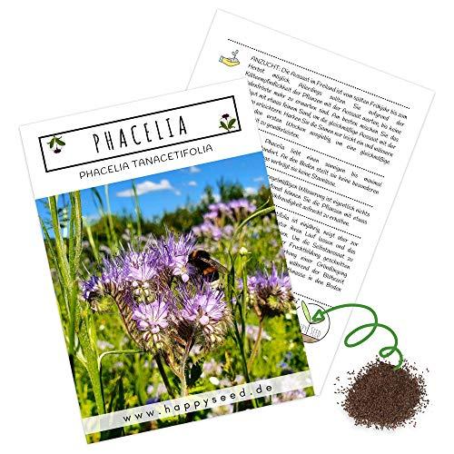 Phacelia Samen Bienenfreund (Phacelia tanacetifolia) als ideale Beimischung für eine bunte Bienenweide - Der Liebling für Bienen & Schmetterlinge