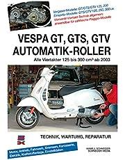 Reparación de instrucciones de GT GTS GTV para GT 125M31| GT 200M31| GTS 125M31–Carburador | GTS 250M451| GTS 300M452| GTV 125M31| GTV 250M451| GTV 300M452