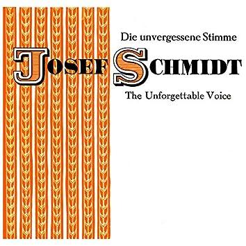 The Unforgettable Voice Of Joseph Schmidt