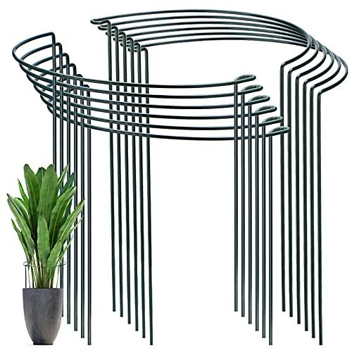 YAIKOAI 12 Stück Pflanzenstütz pfahl, Garten Blumenstütze UV-beständiger Halbrunder Ring käfighalter Rankhilfe Klettergitter für Tomaten Gemüse Blumen Pflanzenanbau...
