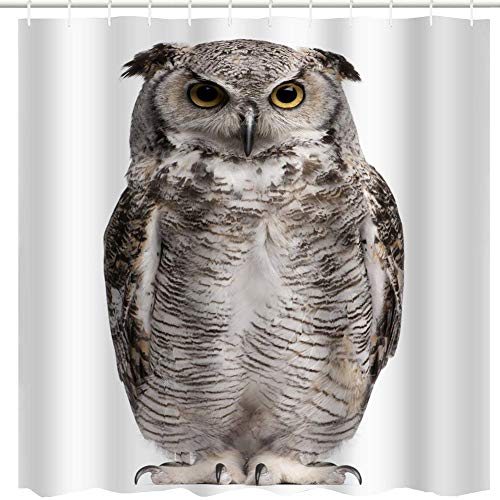 Funny-Face Owl Image Shower Curtain to Highlight Your Bath Decor