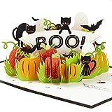 Hallmark Signature Paper Wonder Halloween Pop Up Card (Trick Or Treat)