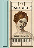 Sick Rose: Disease In The Golden Age Of Medical: Or; Disease and the Art of Medical Illustration