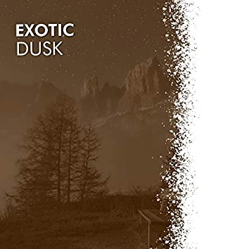 # 1 Album: Exotic Dusk