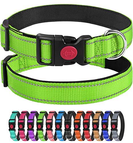 Joytale Collare per Cane in Nylon, con Cnghie Riflettenti,Morbido Regolabile Imbottito Sicurezza Collari per Cani,Verde,20-30cm