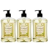 A La Maison de Provence Liquid Soap, Rosemary Mint, 16.9 Ounce (Pack...