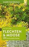 Ulmers Taschenatlas Flechten und Moose: 290 Arten schnell erkennen - Volkmar Wirth