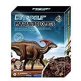 Searchyou - Dinosaurier Ausgrabungsset Kinder Spielzeug - Fossilien Archäologie Ausgrabungsset
