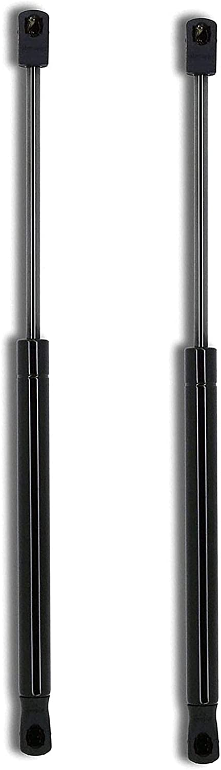 Pair Set of 2 Albuquerque Dedication Mall Front Hood Support Compatible VW with Struts Lift