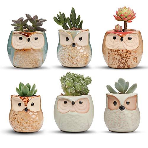 T4U Small Ceramic Flowing Glaze Succulent Planter Pot, Cute Owl Bonsai Pot for Decor Desktop Windowsill Bookshelf, on Christmas and Birthday, Pack of 6(Excluding Plants)