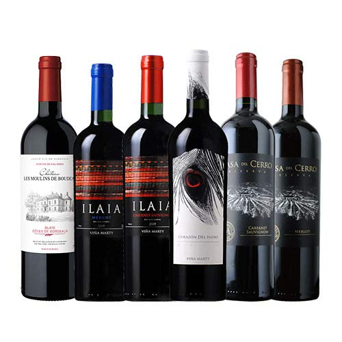 ワインショップソムリエ 特選ソムリエ赤ワイン6本セット(赤ワイン6本) 第21弾