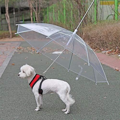 Pet leveringen creatieve paraplu regenkleding hondenriem hond regenjas met ketting Teddy Bichon kleine honden staan onder een poncho-type code hond/kat met behulp van PET paraplu