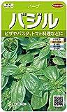サカタのタネ 実咲ハーブ8080 バジル ハーブ 00928080 緑