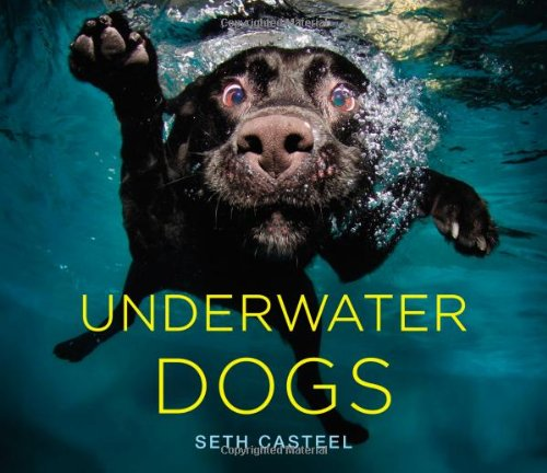 Underwater Dogs Hardcover Book
