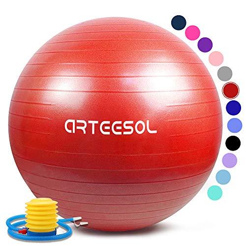 Ballon dexercice Balle de Fitness de 45cm//55cm//65cm//75cm//85cm Ballon d/équilibre de stabilit/é Antid/érapant avec Pompe pour la solidit/é du Noyau arteesol Ballon Fitness