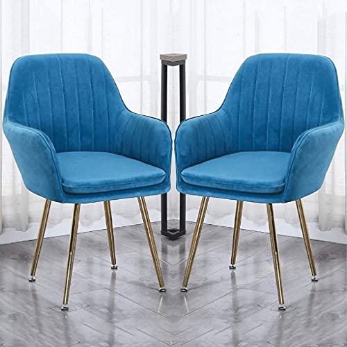 SFSGH Classic Velvet Dining Chairs Set of 2 Vintage armrests Kitchen Chairs Leisure Living Room Corner Chairs with Metal Legs Seat and Backrests
