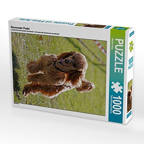 CALVENDO Puzzle Rennender Pudel 1000 Teile Lege-Größe 48 x 64 cm Foto-Puzzle Bild von Martina Berg