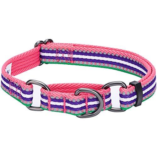 Blueberry Pet 1,5cm S 3M Reflektierendes Bunt Gestreiftes Rosarot Smaragdgrüne und Orchidee Sicherheitstraining Martingale Hundehalsband für Kleine Hunde