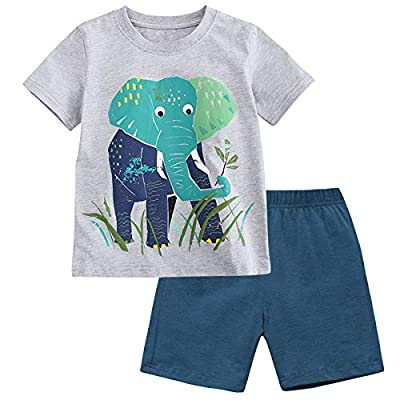 Fiream Baby Boy Summer Clothes Soft Cotton Grey T-Shirt & Blue Shorts 2 Packs, Casual Cute Boys Shirts Adorable Elephant Print Design for School Party Outdoor Play, Size 18 Months, Set1 by