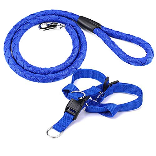 Dog Leash and Harness Set - Durable Dog Leash & Adjustable Cozy Dog Harness for Easy Control Small, Medium Dogs - Stops Dog from Pulling and Choking on Walks