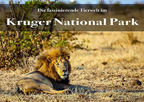 Faszination Kruger National Park (Wandkalender...