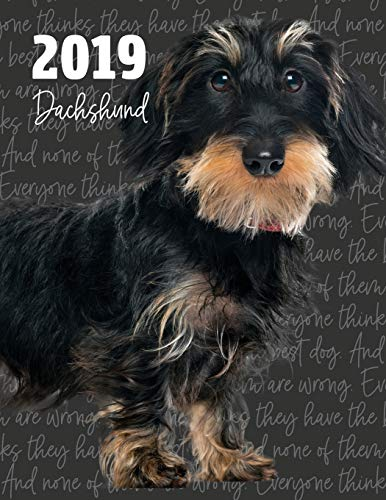 2019 Dachshund: Dated Weekly Planner with to Do Notes & Dog Quotes - Wirehaired Dachshund