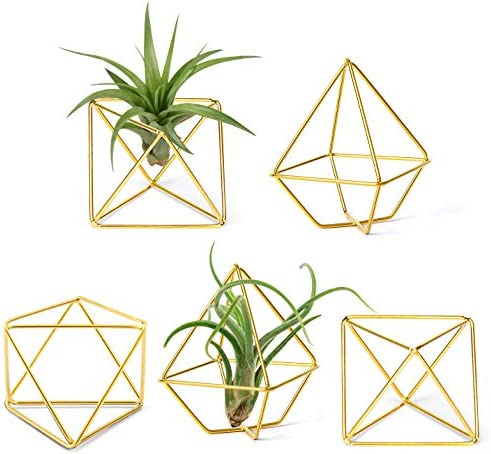 Mkono 5 Pack Air Plant Holder Metal Himmeli Decor in 2 Shapes Mini Desk Air Fern Display Stand product image