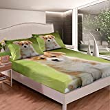 Feelyou Dog Printed Bedding Set Kids Cute Welsh Corgi Bed Sheet Set for Boys Girls 3D Puppt Pet Fitted Sheet Lovely Animal Theme Bed Cover Room Decor 2Pcs with 1 Pillow Case Twin Size