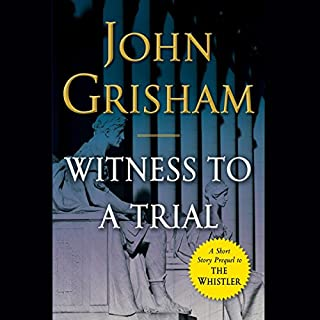 Witness to a Trial audiobook cover art