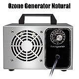 Wensa Generador de ozono Natural Profesional ozonizador Esterilizador Limpiador purificador de Aire Comfort Acero Inoxidable Comercial Desodorante y Esterilizador,5g