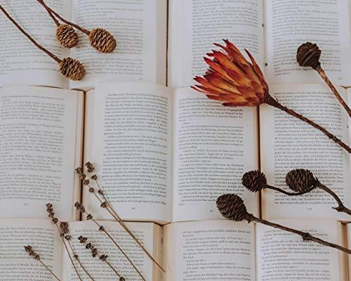 Pintar por NúMeros para Adultos Y NiñOs Kits De Regalo De Pintura Al óLeo DIY Arte De Lienzo Preimpreso DecoracióN del Hogar Libros Flores Plantas Secas