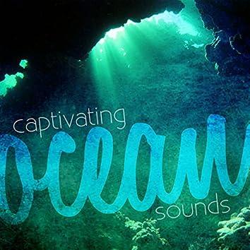 Captivating Ocean Sounds
