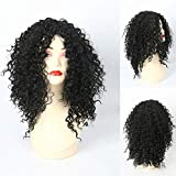 GNIMEGIL Afro Kinky Curly Hair Replacement Wigs Costume Party African American Wigs for Women (Color:Black;Length:22 inches; Head Circumference Size is 20-24 inches)