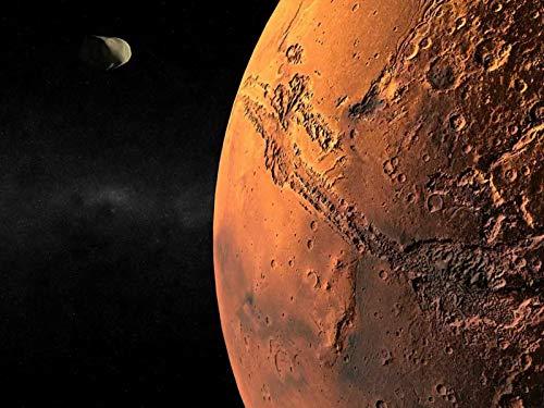 火星の生命体