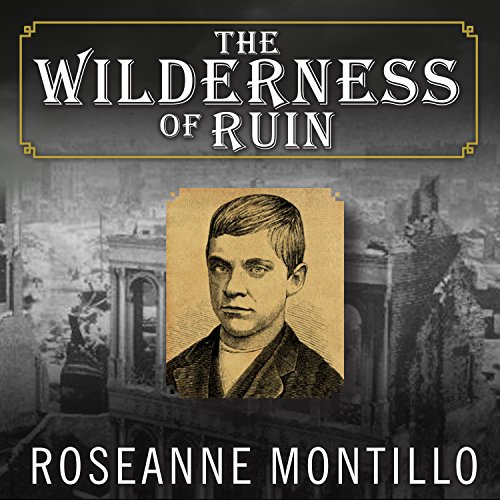 The Wilderness of Ruin audiobook cover art