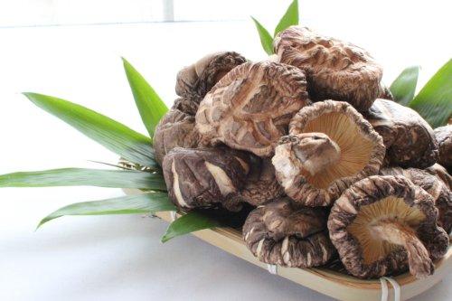 【九州産原木栽培!大玉どんこしいたけ】一口では食べ切れない大玉サイズ「どんこ(4.5cm〜6cm)130g」