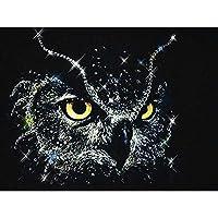 ダイヤモンドの絵画 ダイヤモンド絵画漫画フクロウダイヤモンド刺繡フルディスプレイダイヤモンドモザイククロスステッチキット動物ビーズ針仕事